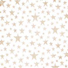 Лист Веллума Copper Stars Sweet Freedom Foiled от Pink Paislee