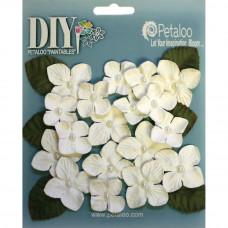Цветы White Darjeeling Hydrangeas