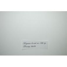 Картон белый (315)