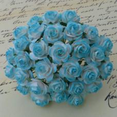 Розы  «Бело-голубые»