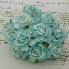 Кудрявые розы  «Аквамарин»