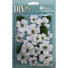 Цветы White Canvas Dogwood Blossoms
